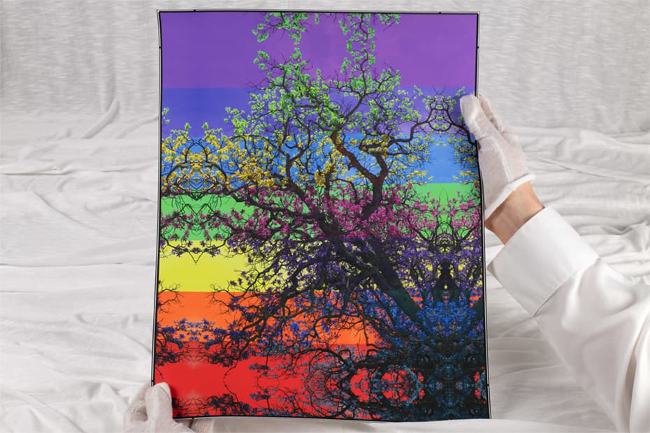 hands holding large print of a rainbow tree